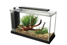 Fish & Pond Products / by Pet Age