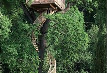 Unbelievable Tree Houses / Different kinds of tree houses / by Jeanette Cote