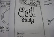 Weathering and Soil Formation / by Charlyn Magat