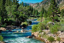 A river runs through it / by Pamela Brown