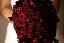 Wedding Ideas / Our wedding ideasll 2015 / by Marcella Gutierrez