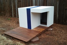 Dog/Chicken House / by Lexi Lewis