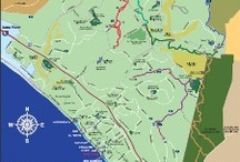 Orange County, CA Trail Maps / by Traci (Walk Simply)