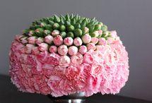 fleurs-carnations / by Jackie Butterfield Winkel