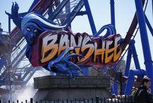 Kings Island's Banshee / by Theme Park Insider