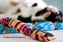 DIY Pets / by Lizzie Lynne