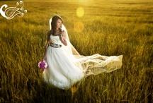 Wedding / by Laura Carroll