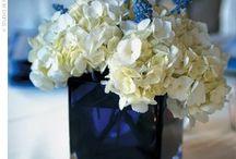 Beautiful Flowers / by Meredith Lockhart