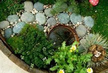 Fairy garden / by Lorrie Matthews
