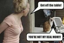 Funnies / by Kelly Hersman