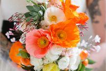 Flowers we love! / by Lani Elizabeth