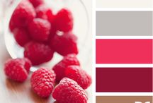 Colour Themes / by Evelyn Flores