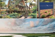I am claiming it / 2013 HGTV Dream Home / by Marilyn E. Brown