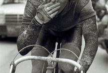 paris roubaix / by shane t