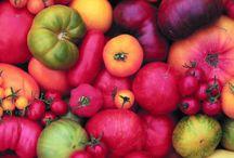 Gardening / by Kellie Steiner