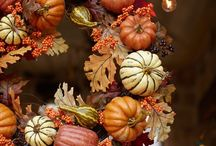 Everything About Fall / by Melinda Szerencsy