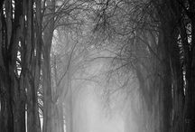 Photography Black & White / by Jeff Berbert