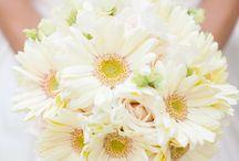 Kiersten / by Dandie Andie Floral Designs