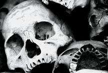 Skullage  / by Tanya Girvan