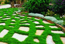 garden and home / garden and home ideas,design,architecure / by Petite Pantry