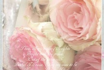 Alles met een roosje erop. / by An Blom