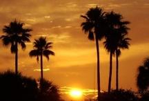 Sunrise, Sunset  / by WeatherNation