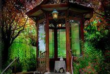 Gardening / by Saraline Grenier