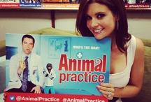 TCA Press Tour / by Animal Practice NBC