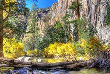Taos Adventure / by Lauren Felts