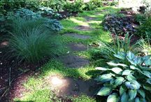 Landscaping / by Paige Osberg
