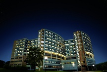 Inside C.S. Mott Children's Hospital  / by University of Michigan Health System