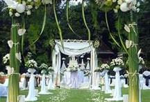weddings / by Darlene Hewitt