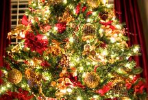 Christmas Trees / by M