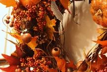 Fall / by Paula Hall