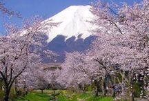 Japon. / Le Japon, en forme longue l'État du Japon, en japonais Nippon ou Nihon (日本?) et Nippon-koku ou Nihon-koku (日本国?) respectivement, est un pays insulaire de l'Asie de l'Est. Situé dans l'océan Pacifique, il se trouve dans la mer du Japon, à l'est de la Chine, de la Corée et de la Russie, et au nord de Taïwan. Étymologiquement, les kanjis (ou idéogrammes) qui composent le nom du Japon signifient « lieu d'origine du Soleil » ;  / by Guy Combes