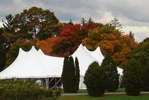 2013 Harvest Party / by Millbrook Winery