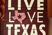 Texas...it's just that great / by Melissa Guzman
