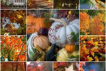 Autumn / by Julie O'Day Whitt