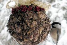 A - Mes petits oiseaux / by Lisette Renaud