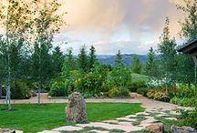 Beautiful Backyards / by Jan Barrett