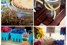 Farm birthday / by Stephanie Noordyke