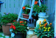 Gardening & outdoor decor / by Stephanie Allam