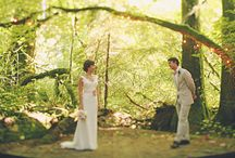 Celebrate: Weddings / by CallMeCrissy (Christina Willis)