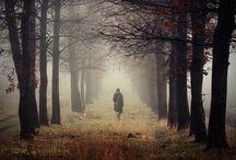 Caminante, no hay camino, se hace camino al andar / by Lucia Millan Sanchez