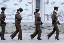 north korea/ kim jong un / by Daiva Channing