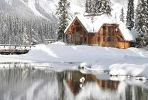 Home For The Holidays / by Lauren Lubischer