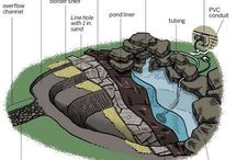 DIY natural swimming pond / by Staci Lightfoot