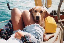 I Love Dogs / by Tiana Kai