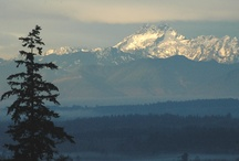 Washington State / by Kim Hart