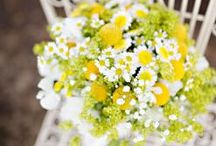 Flowers / by Jennifer Van Derwerker